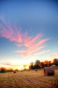 hay roll, Sunset, Manassas, VA - Angela B. Pan Photography