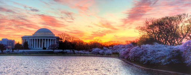 tidal basin, cherry blossom, sunrise, jefferson, thomas jefferson, jefferson memorial, angela b.pan, abpan,