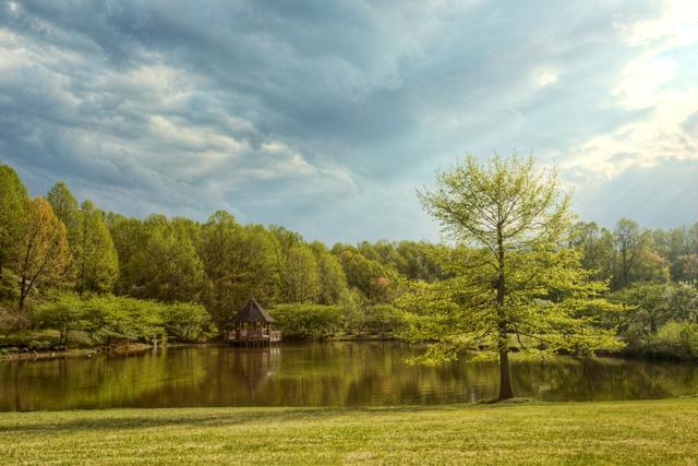meadowlark, botanical garden, lake, sunset, trees, reflection, hdr, landscape, angela b. pan, abpan