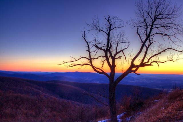 Shenandoah, National Park, sunrise, landscape, tree, virginia, hdr, angela b. pan, abpan