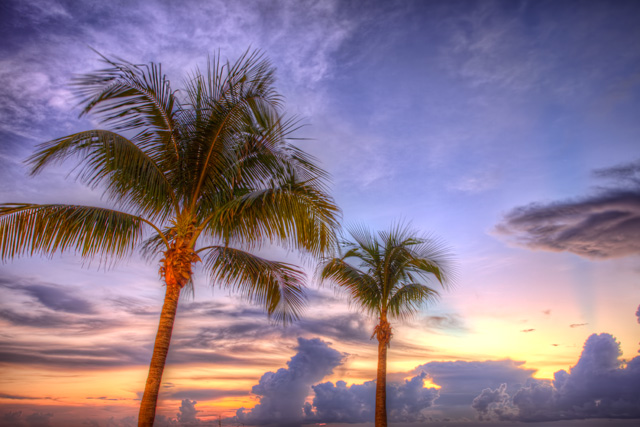 florida, miami, sunny isles, beach, sunrise, landscape, travel, hdr, palm trees, angela b. pan, abpan