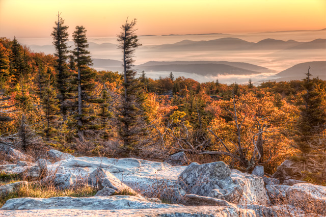 dolly sods, angela b. pan, abpan, west virginia, landscape, nature, sunrise, travel, hdr, photography