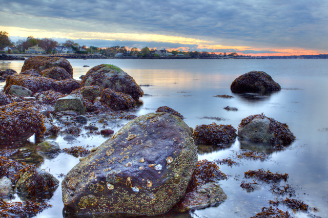 greenwich, ct, connecticut, landscape, rocks, beach, angela b pan, abpan, photo, photography, hdr, sunrise, seaweed,