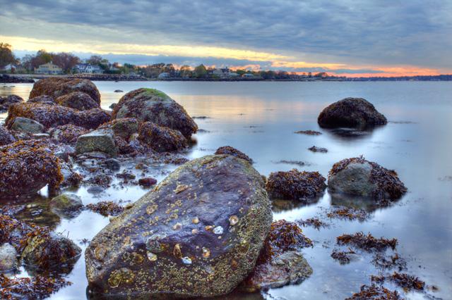 greenwich, ct, connecticut, landscape, rocks, beach, angela b pan, abpan, photo, photography, hdr, sunrise, seaweed,