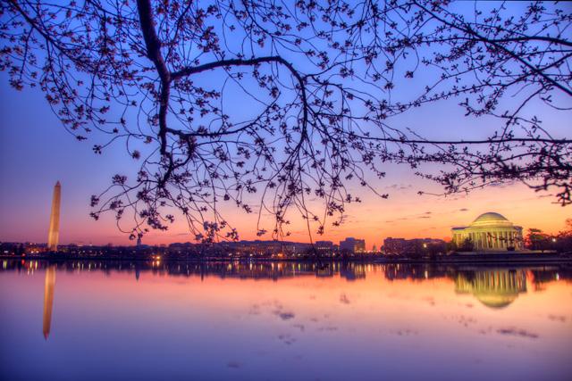cherry blossoms, tidal basin, washington dc, angela b. pan, abpan, hdr, photography, photo, washington monument, jefferson memorial, landscape, sunrise, travel