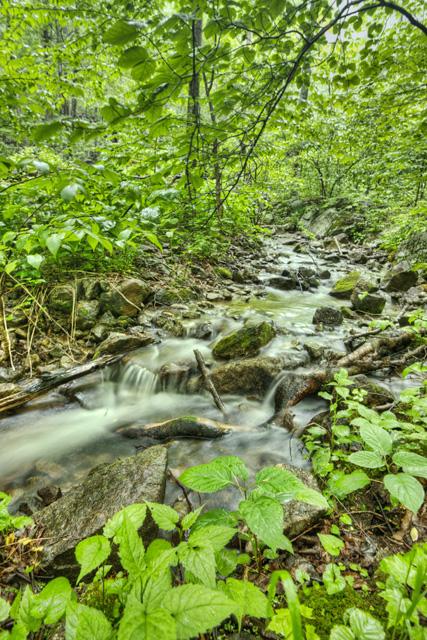 creek, blue ridge mountains, virginia, angela b. pan, abpan, hdr, landscape, travel, photography, photo