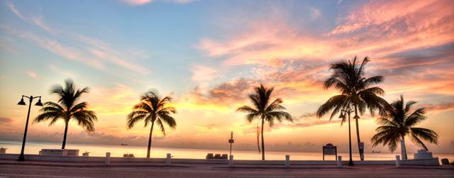 palm, ft. lauderdale, fl, angela b. pan, abpan, hdr, landsscape, sunrise, trees