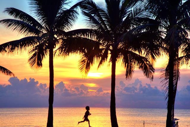 running boy, landscape, sunrise, palm trees, ft. lauderdale, florida, hdr, angela b. pan, abpan