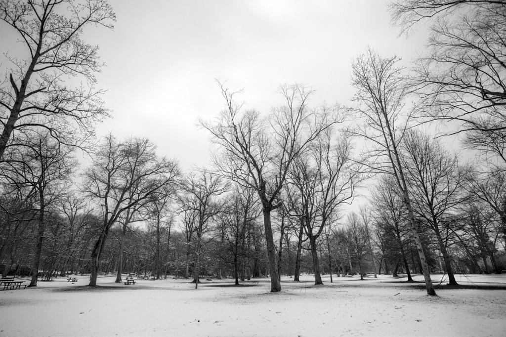 great falls, snow, trees, landscape