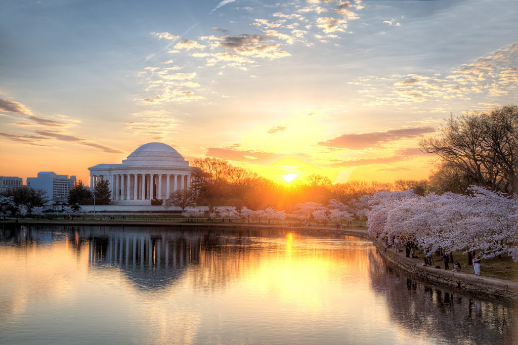 jefferson memorial, washington-dc, sunrise, cherry blossoms