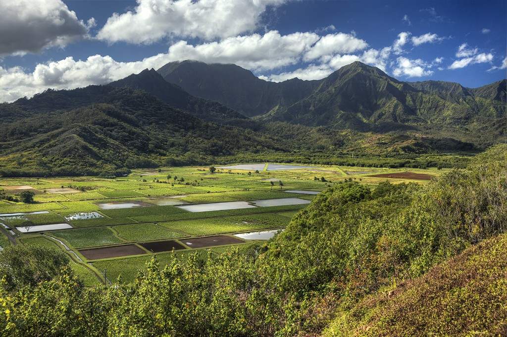 kawailoa bay, mah'ulepu, kauai, hawaii