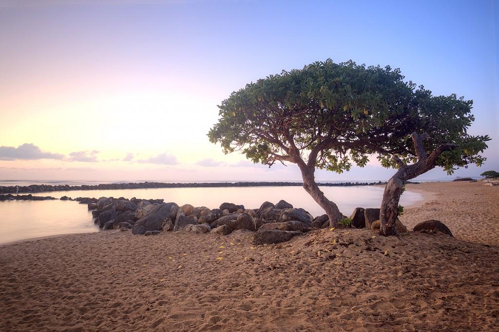 lydgate, kauai, hawaii, sunrise