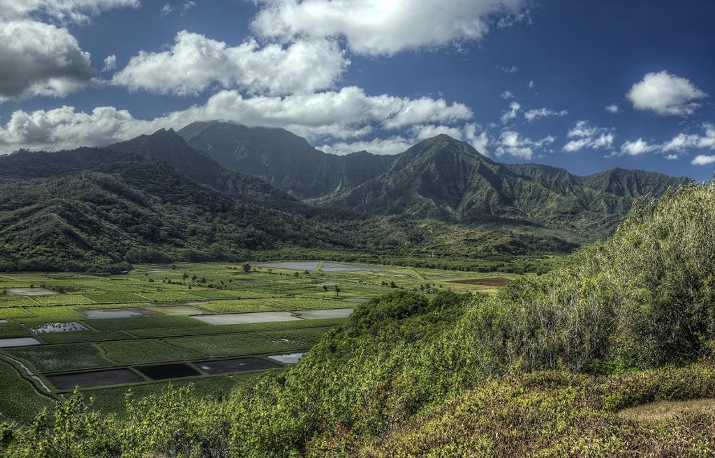 kauai, hawaii, hanalei valley