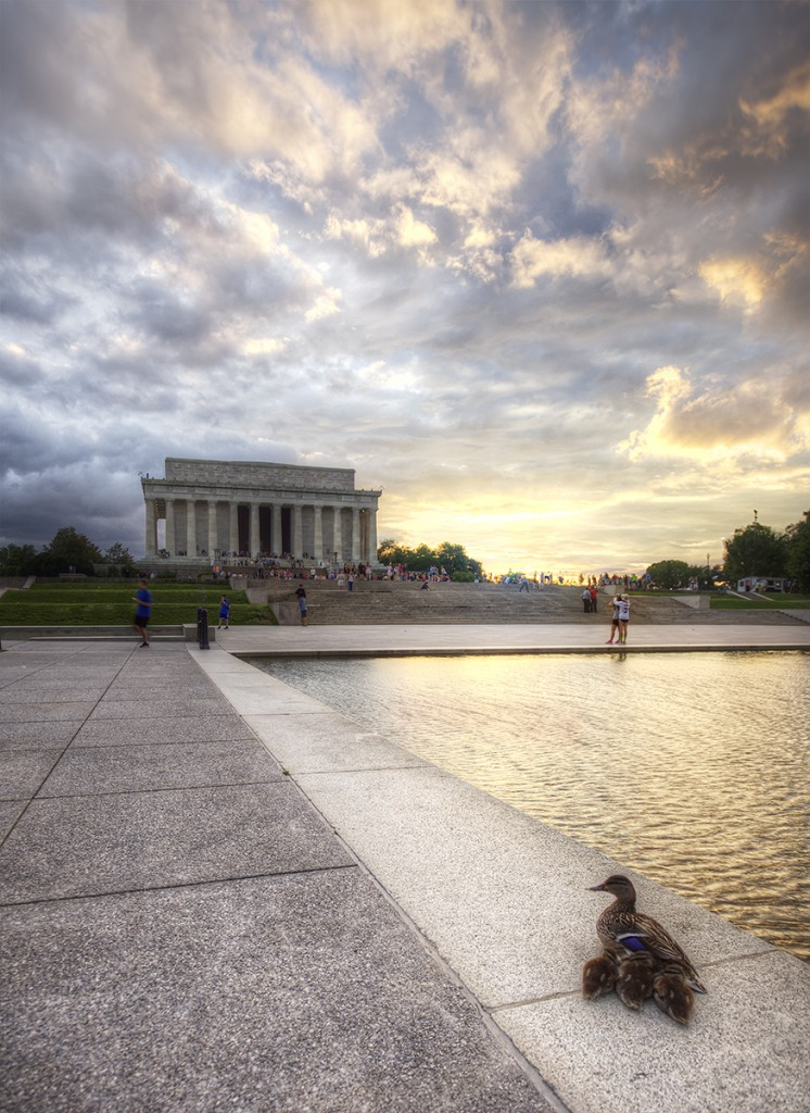 lincoln memorial, ducklings, sunset, storm