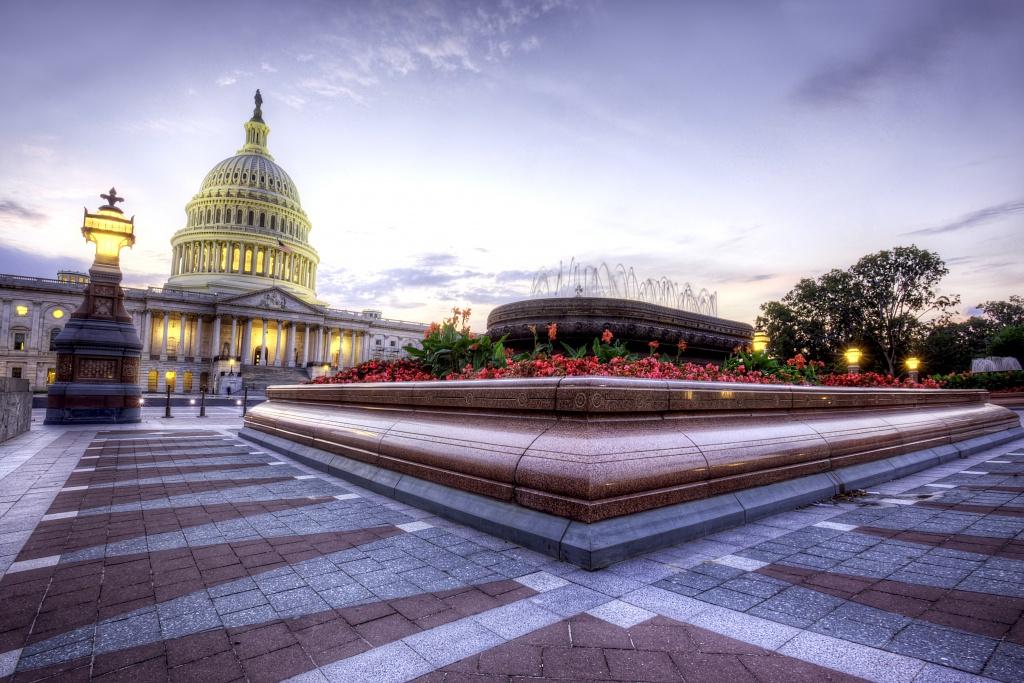 capitol-withflowersat sunset