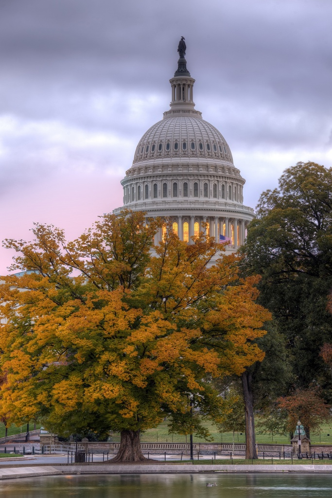 capitol, capital, washington dc, architecture, fall, autumn, fall, leaves, colors, sunrise, washington dc, travel, united states, usa, america, dome