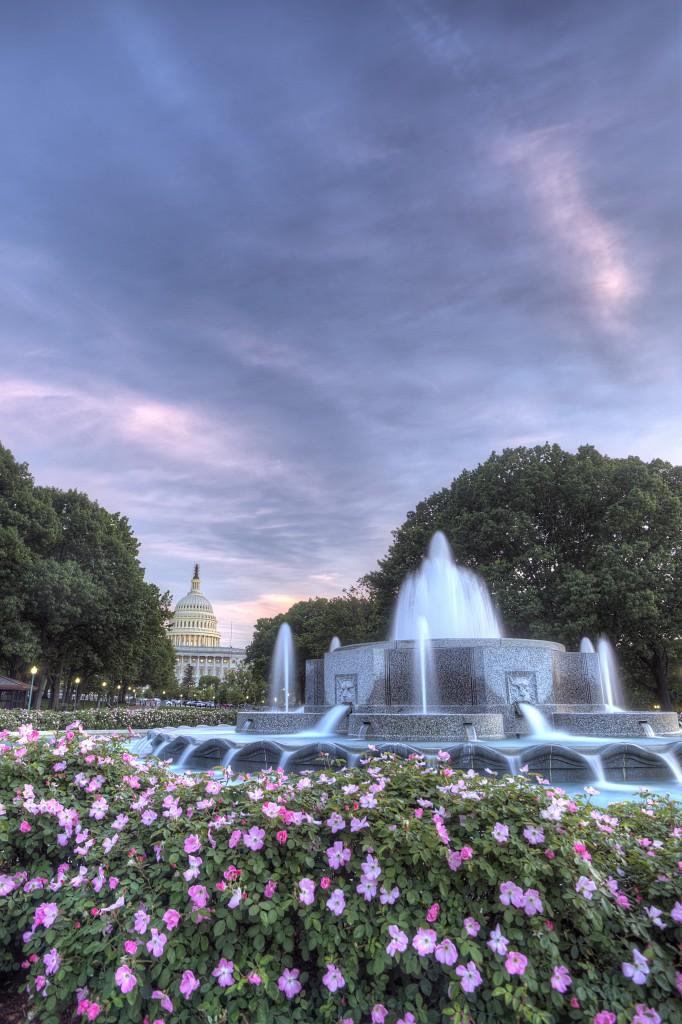 lower senate park, capitol, architecture, fountain, flowers, sunset, washington dc, travel, united states, usa