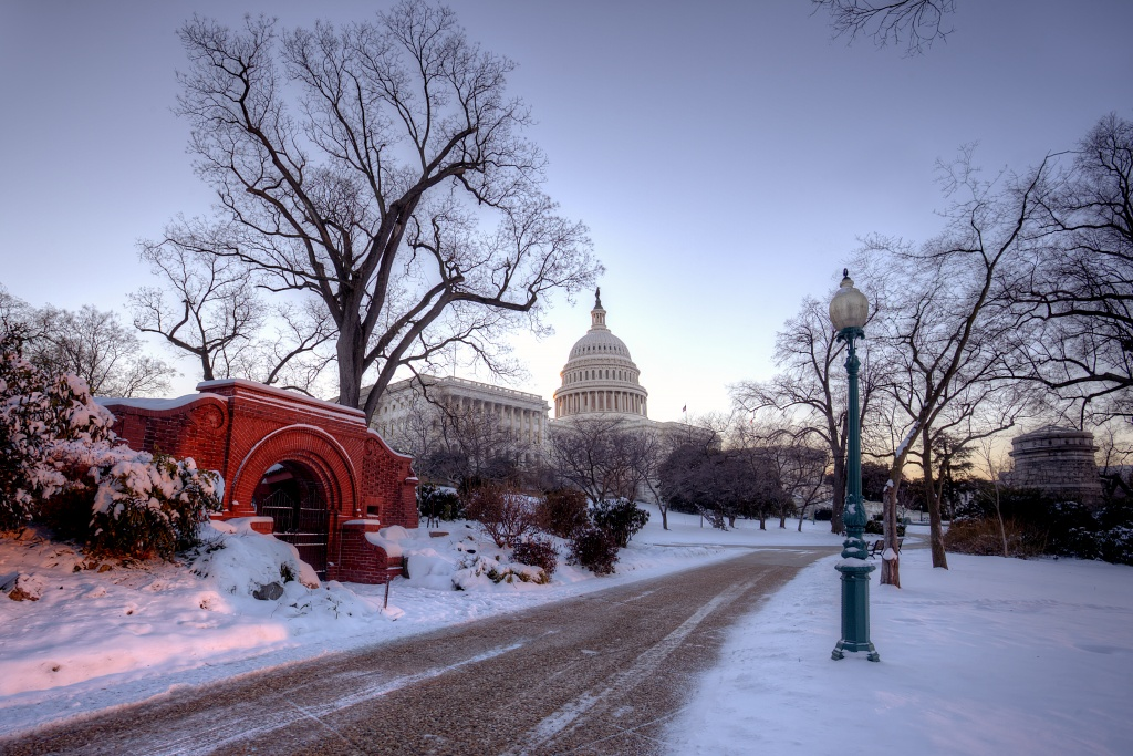 capitol, capital, washington dc, snow storm, snow, trees, path, washington dc, travel, winter