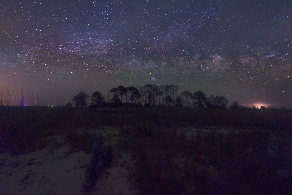 florida, st george, milky way, galaxy, jesse summers, travel, trees, fl, state park