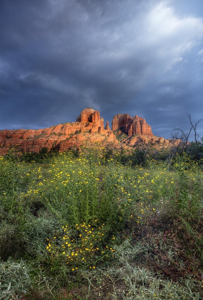 cathedral rock, redo, rework, arizona, az, sedona, rain, storm, clouds, wildflowers, sunset, desert