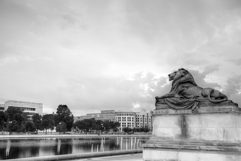 lion, ulysses s grant, washington dc, sunset, statue, memorial, reflecting pool, architecture, art,