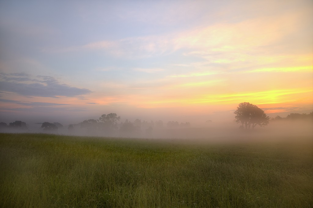 manassas, virginia, battlefield, va, park, trees, fog, sunrise, landscape,