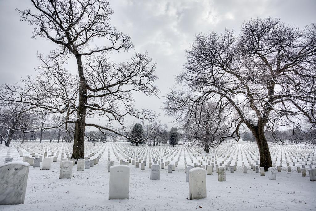 arlington national cemetery, snow, winter, trees, symmetry, virginia