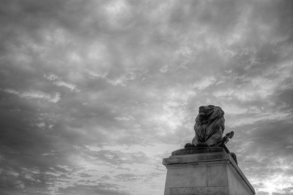 lion, statue, art, capitol, united states capital, washington dc, black and white, tour,