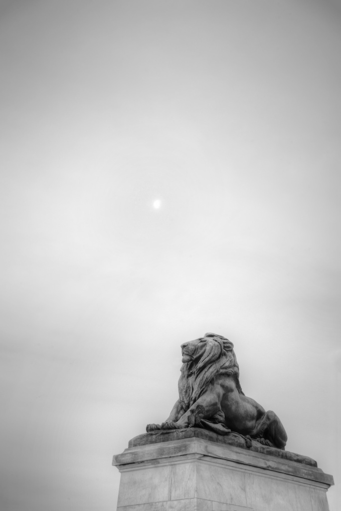 rain clouds, sunrise, cloudy day, washington dc, lion, statute, house of cards, art, black and white, simple,