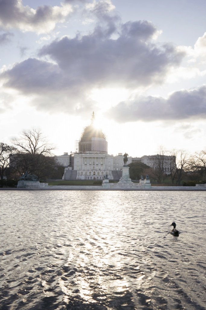 us capitol, architecture, sun, flare, duck, water, ripple, government, washington dc