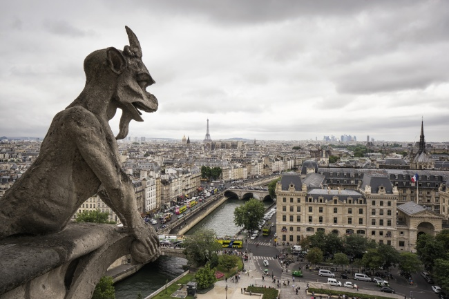 notre dame. gargoyle, paris, overcast, clouds, cityview, panoramic, lookout, overview, cathedral, visit, france, paris, city
