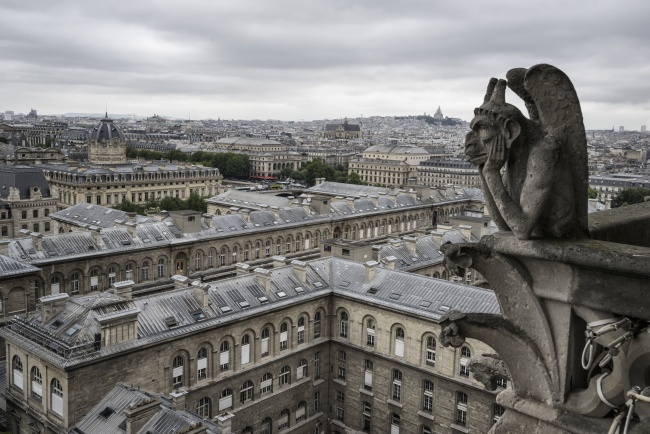 gargoyles, notre dame, france, paris, buildings, architecture, landscape, cloudy,