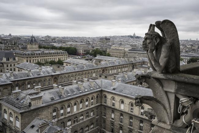 gargoyles, notre dame, france, paris, buildings, architecture, landscape, cloudy,