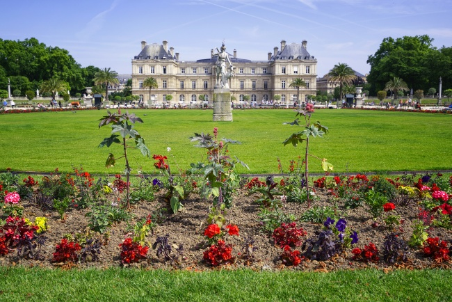 luxembourg garden, paris, france, flowers, gardens, picnic, Jardin du Luxembourg, pitti palace