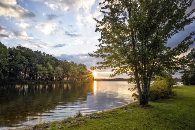 lake anna, sunrise, water, trees, nature, bumpass, fredricksburg, virginia, va, weather, visit, summer