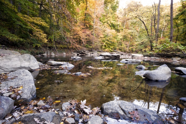 rock creek park, water, creek, washington dc, rocks, autumn, fall, trees, leaves, changing, colors, travel, foliage, reflection,