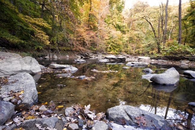 rock creek park, water, creek, washington dc, rocks, autumn, fall, trees, leaves, changing, colors, travel, foliage, reflection,