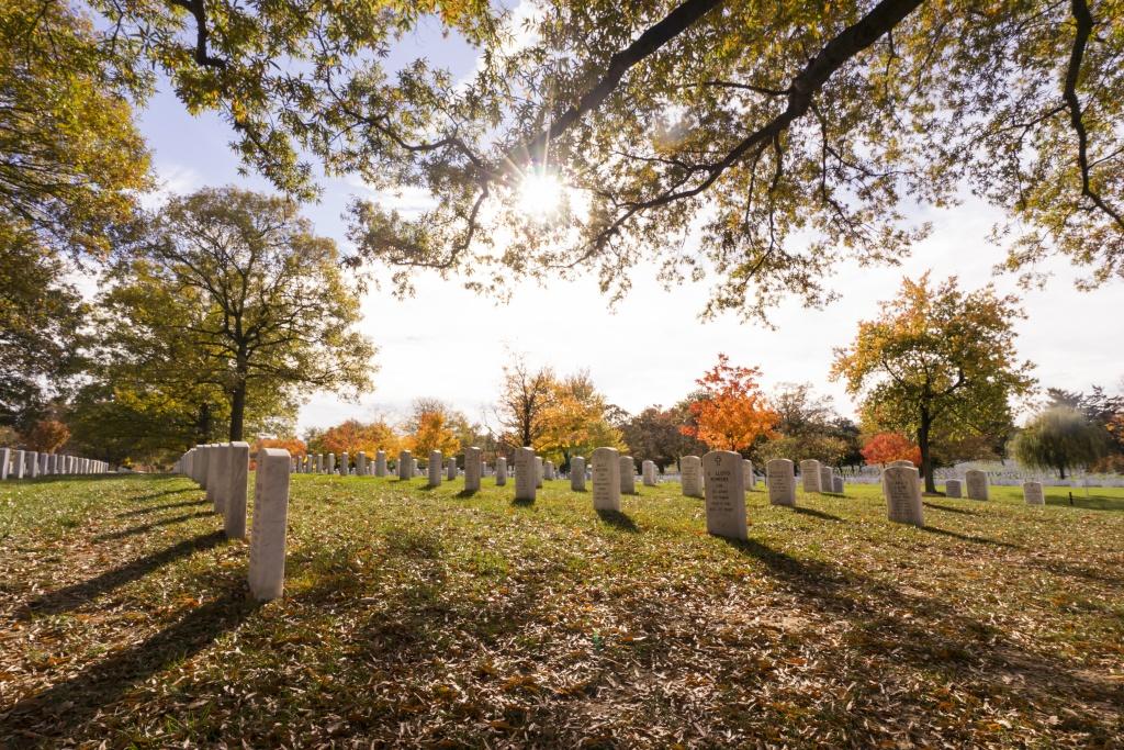 arlington cemetery, national cemetery, military, fall, autumn, trees, leaves, arcanum,