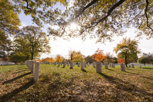 arlington cemetery, national cemetery, military, fall, autumn, trees, leaves, arcanum,