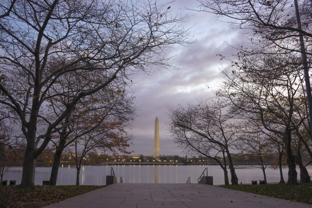 trees, changing of seasons, washington monument, washington dc, sunrise, clouds, tidal basin, fdr memorial,