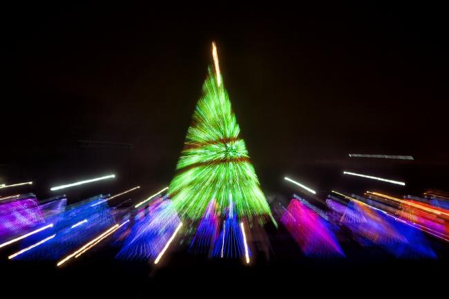 white house, washington dc, christmas trees, holidays, celebration, holiday songs, lights