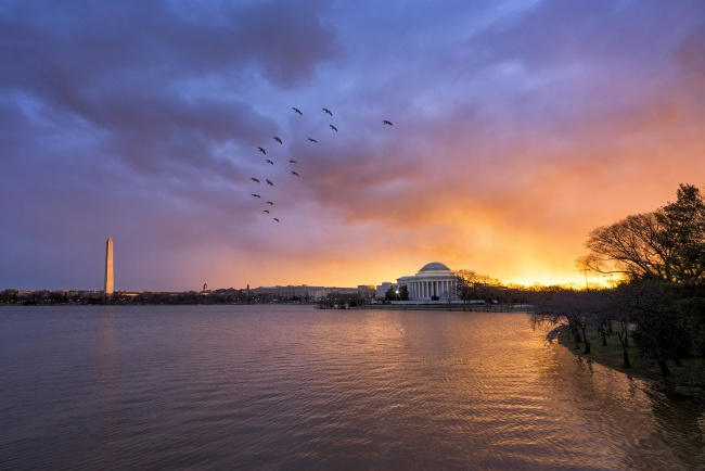 after the storm, tornado, storm, weather, sunrise, jefferson memorial, tidal basin, washington monument, birds, clouds, flood, morning, water, thunder, rain, severe, washington dc,