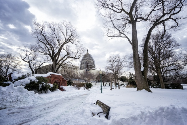us capitol, washington dc, blizzard, 2016, jonas, snow, winter, blizzard, trees, dome, construction, bench, trees, visit, travel