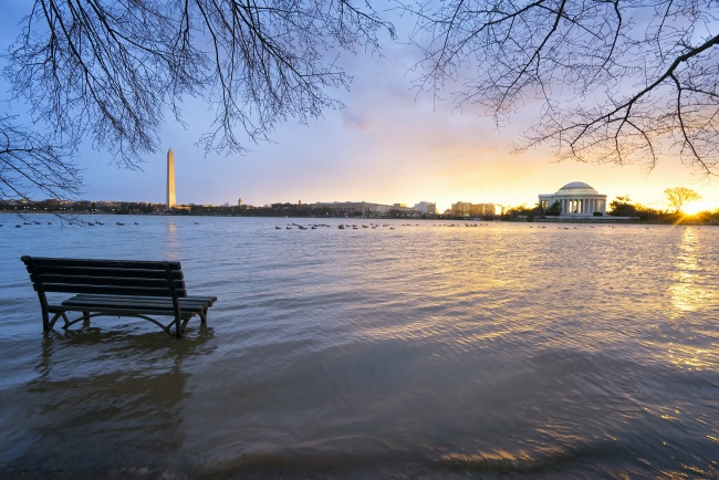 tidal basin, sunrise, flood, water, rain, thunderstorm, tornado, washington dc, jefferson memorial, washington monument, cherry blossom trees, branches, reflection, flood,