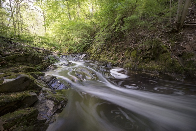 rock creek park, washington dc, soapstone valley trail, creek, water, filter,