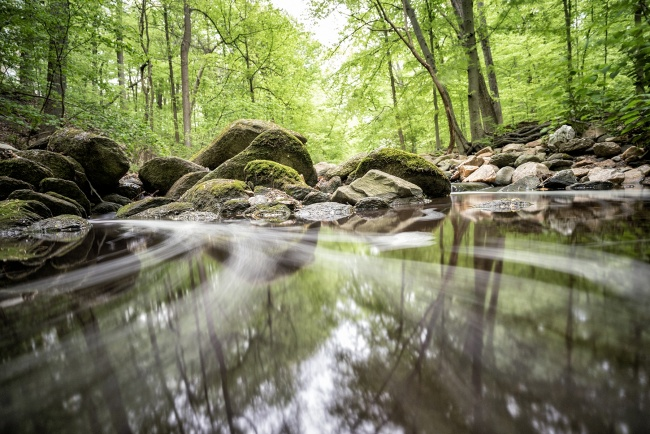 rock creek park, soapstone valley trail, washington dc, instameet, igdc, instagram, reflection, trees, nature, long exposure, water, creek,