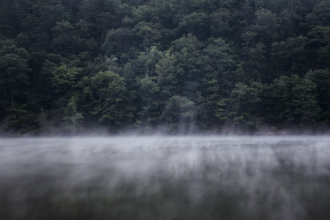 morning fog, hungry mother state park, virginia, va, southern, lake, water, trees, fog, mist, beach,