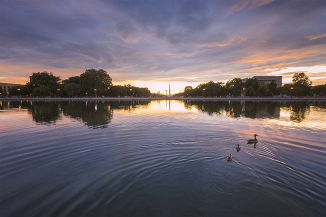 capitol, reflecting pool, sunset, us capitol, us capital, washington dc, storm, sunset, clouds, ducks, family, ducklings, visit,