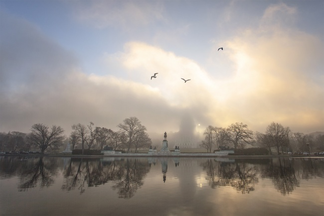 us capitol, building, fog, clouds, birds, reflection, reflecting pool, trees, washington dc, sunrise