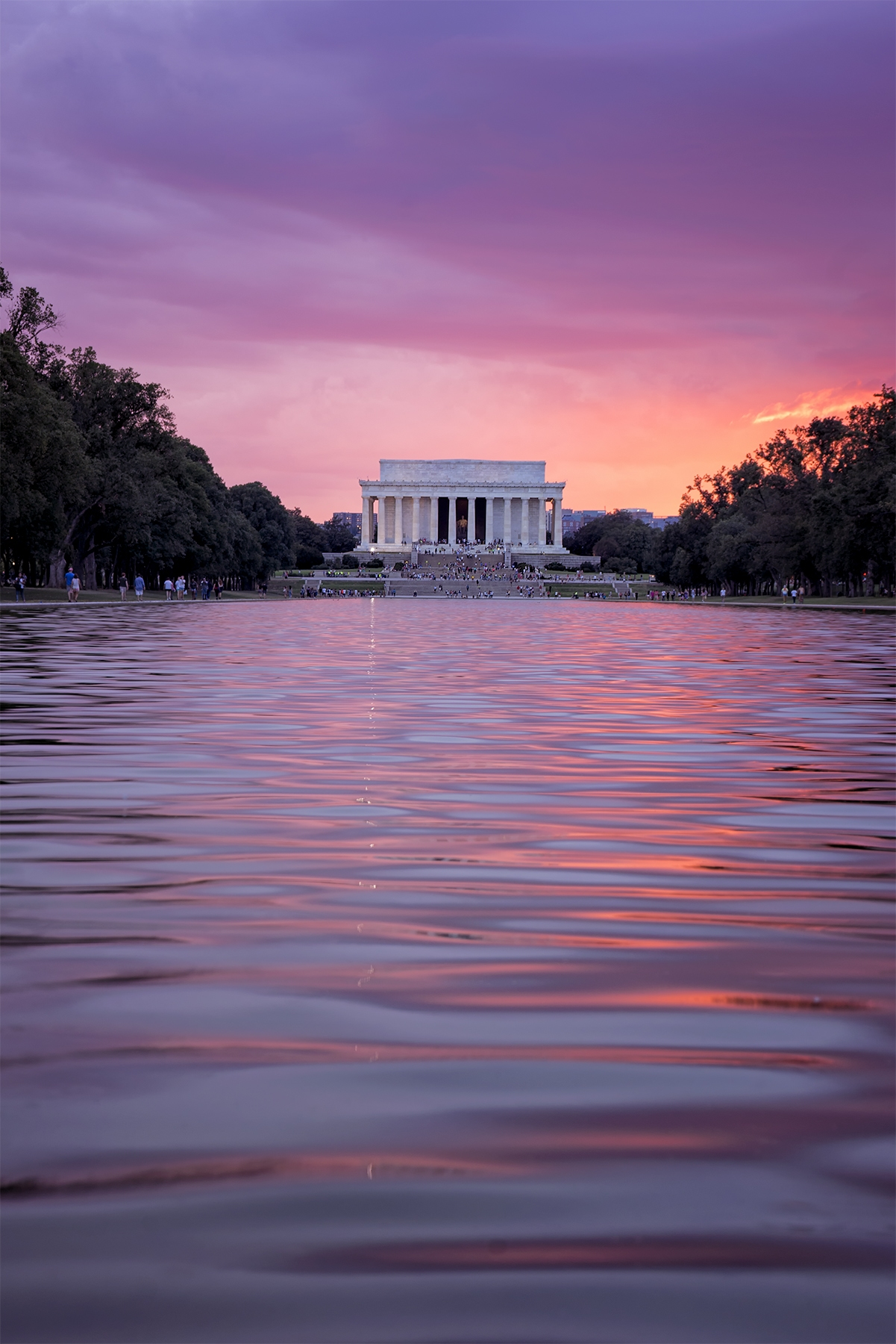 lincoln memorial reflecting pool, reflecting pool, washington dc, sunset, purple, pink, united states, lincoln memorial, national mall, water, parks, memorial sites, forrest gump